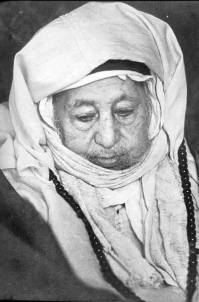 Shaykh Muhammad ibn al-Habib (1876-1971)