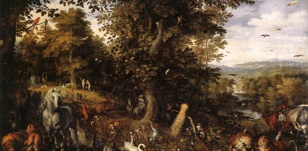 Elevens animaliska resa genom lärdomens labyrint – reflektion av Abdussalaam Nordenhök